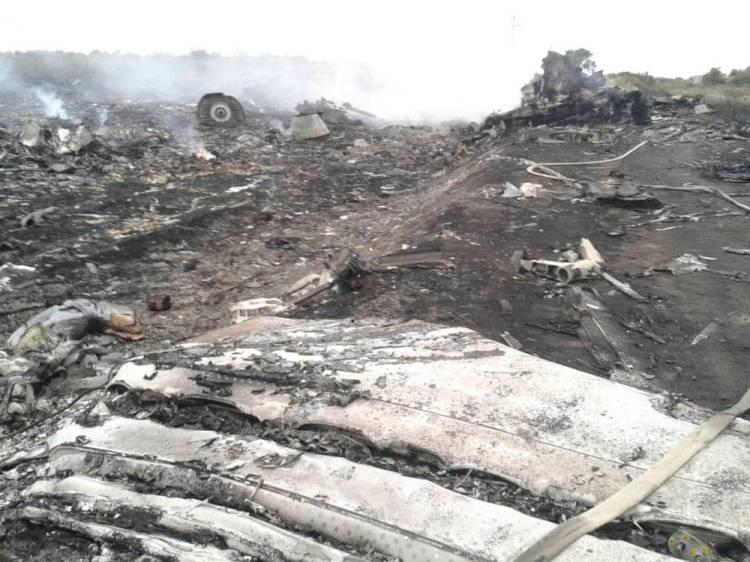 A general view shows the site of a Malaysia Airlines Boeing 777 plane crash in the settlement of Grabovo in the Donetsk region, July 17, 2014. The Malaysian airliner was shot down over eastern Ukraine by pro-Russian militants on Thursday, killing all 295 people aboard, a Ukrainian interior ministry official said.  REUTERS/Maxim Zmeyev (UKRAINE - Tags: TRANSPORT DISASTER MILITARY)